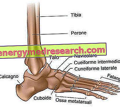 tratamentul gleznei tendonice