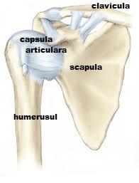 boli articulare severe artroza încheieturii mâinii simptomelor și tratamentului