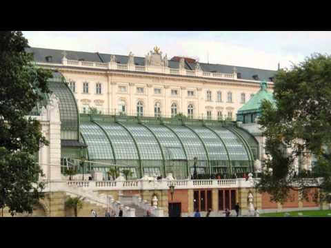medicină comună din Austria inflamație fluidă între articulații