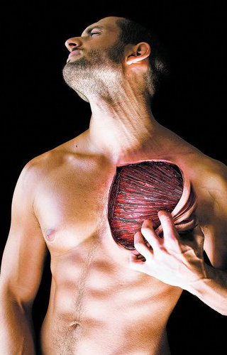 Durerea musculară explicată