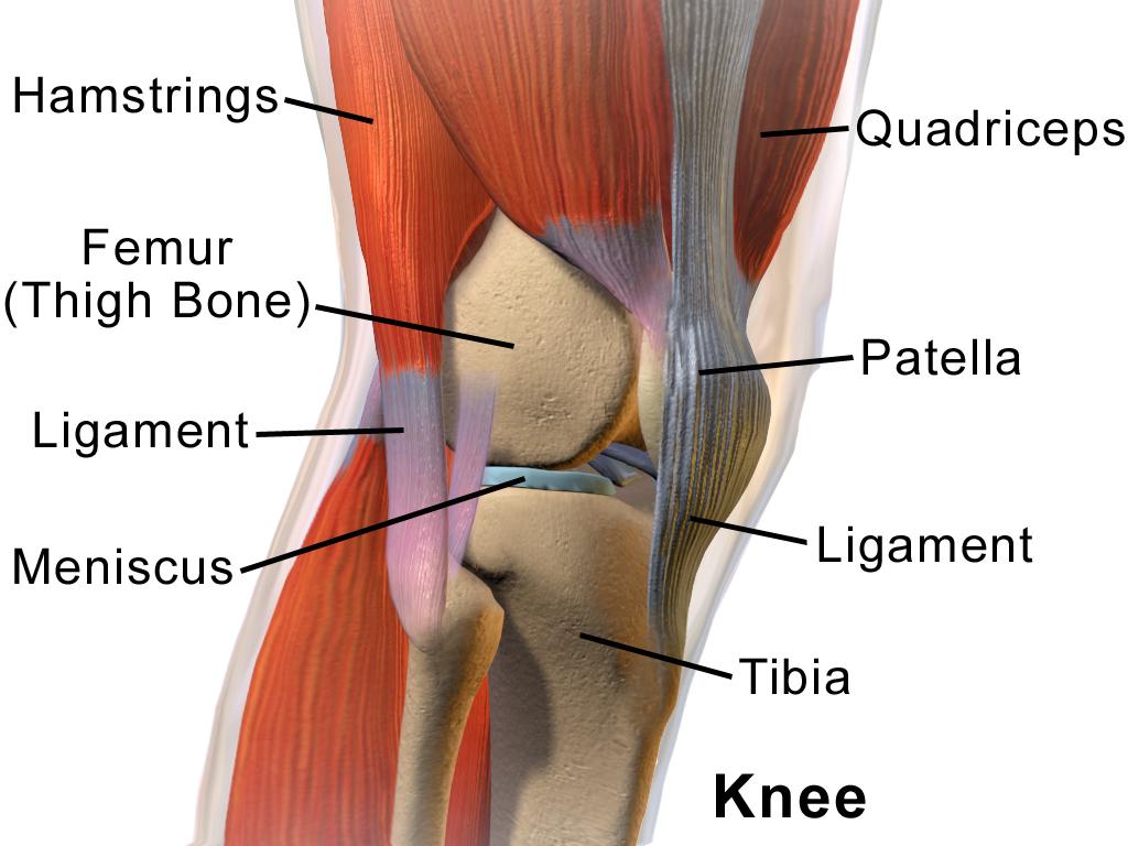 inflamația pungii periarticulare a articulației genunchiului deteriorarea parțială a ligamentului genunchiului