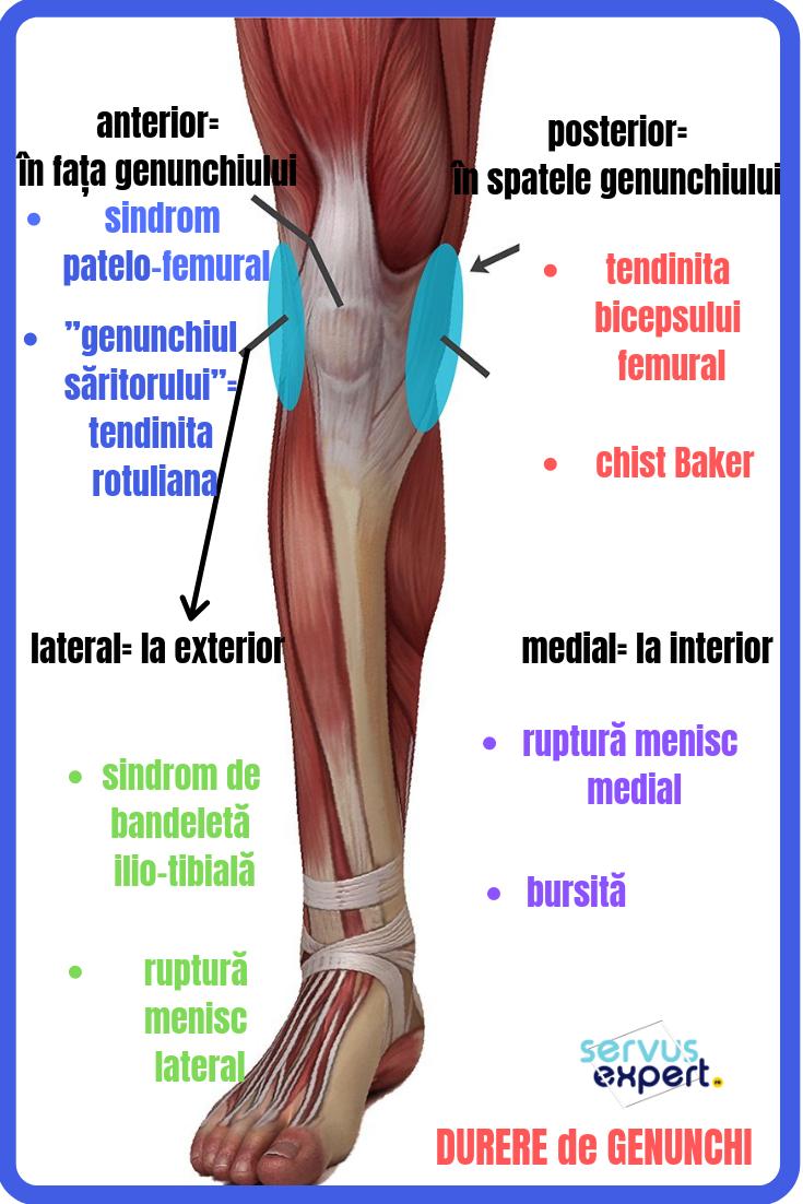 care sunt remediile pentru artrita genunchiului luând hormoni și dureri articulare