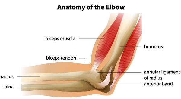 simptomele leziunilor la genunchi cu menisc durere în articulațiile întregului corp cum se tratează