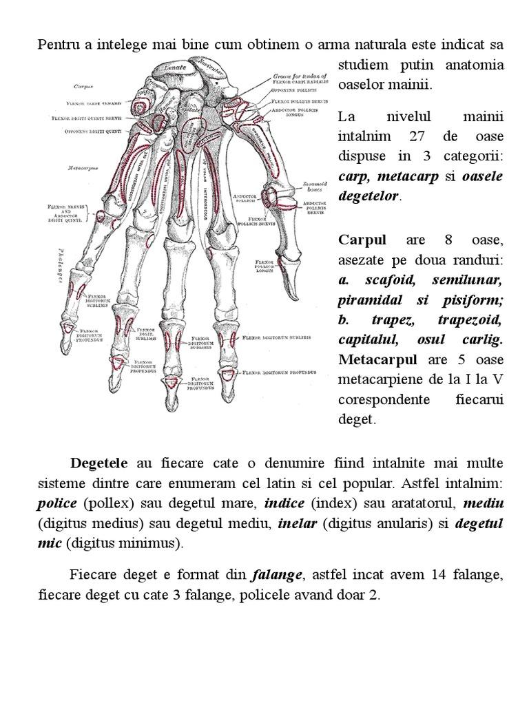 osteoporoză Tratamentul articulațiilor genunchiului de 2 grade inflamația articulară la nivelul piciorului cum se tratează