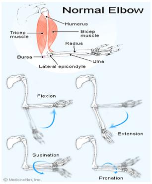 durere articulară ibuprofen