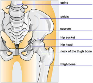 gimnastică medicală a durerii în articulația umărului