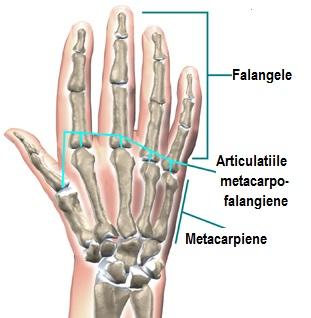 unguent pentru nevralgia articulației umărului simptomele osteochondrozei articulațiilor